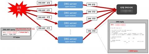 안랩이 조사발표한 DNS 증폭 디도스 공격 개념도 (사진제공: 안랩)